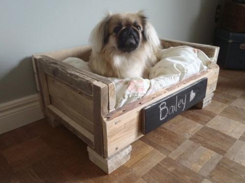 cantinho para pets na decoração da casa - caixote