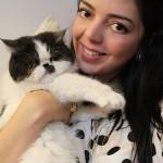 Os gatinhos da Lia Camargo