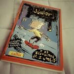 Livro: Júnior e os Biscoitos de Zumbis